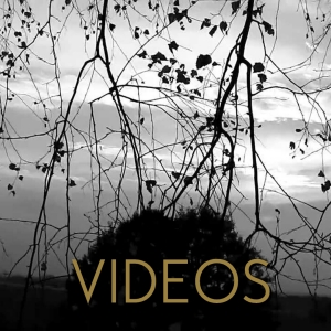 Button_Videos_HP_Gold